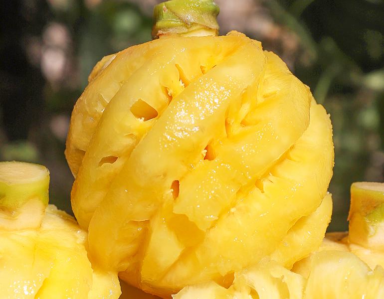 泰国小菠萝,一款可以当零食吃的水果