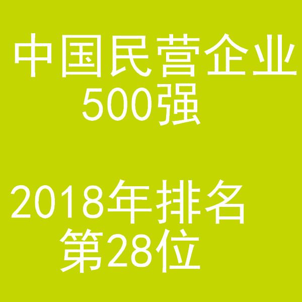 中国民营企业500强  2018年排名第28位